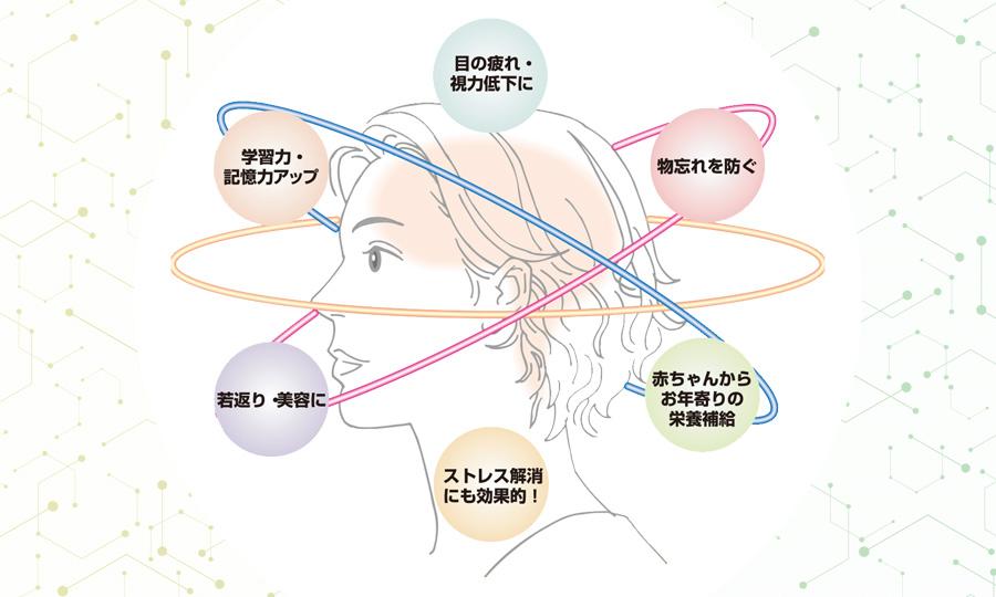 脳の働きを表したイメージ